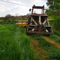 Royesfarm - IMG_20200429_090126 - 1600 px